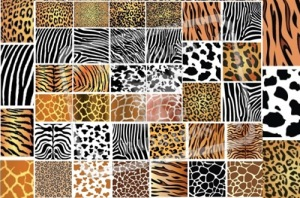animal_skin_patterns_thumb[2]